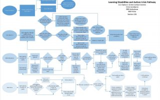 LD Autism 'To Be' Pathways v0.10_Page_3